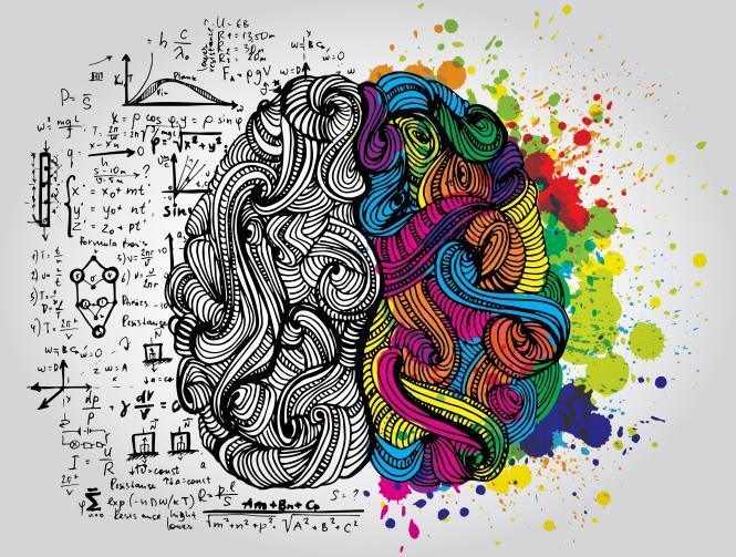 ¿Conoces tus Hemisferios Cerebrales?